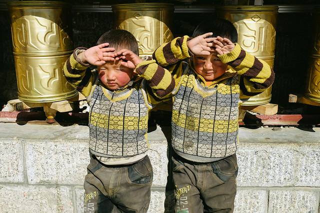 Tibetan Twins
