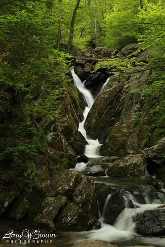 virginia cascade shenandoahnationalpark hogcampbranch roseriverloop