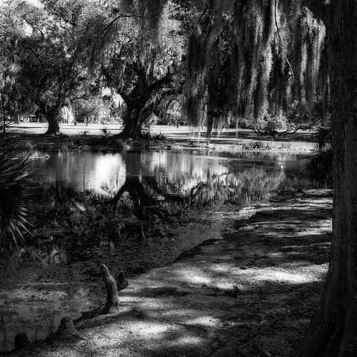 sony rx100 citypark new orleans louisiana bw monocrhome shadows reflection square lucymagoo lucymagooimages nola travel monochrome neworleans