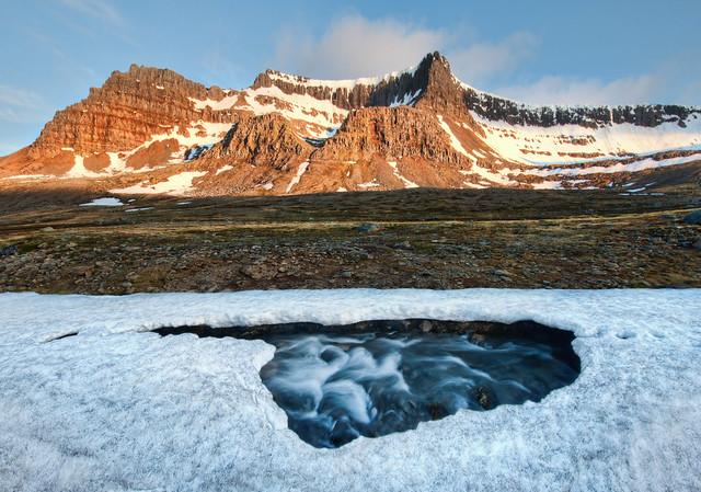 Delicate Ice in Spring