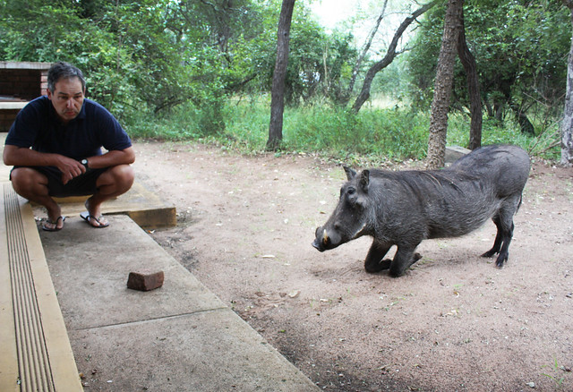 Renato and the Warthog contemplate a brick
