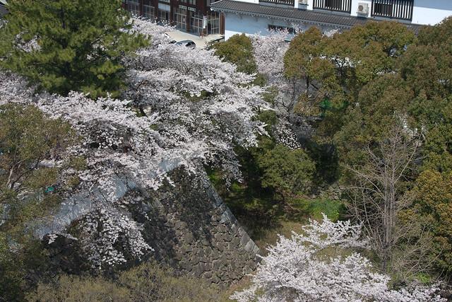 2012-kyushu-216