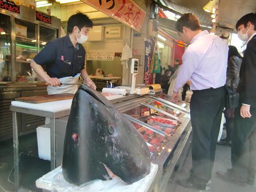 Tokyo-113- Fish market tuna head