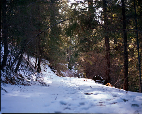 Mount Lemmon, Arizona