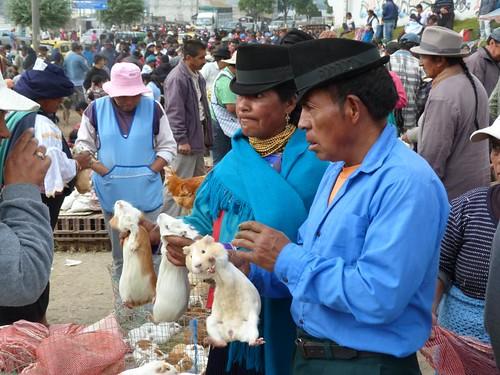 Otavalo, negociando por unos cuys