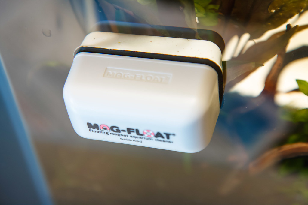 Mag-Float Small Aquarium Glass Cleaner Review (Float-30)