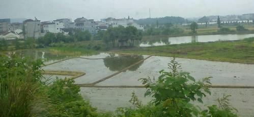 Zhejiang-Yushan-Wenzhou-train (20)