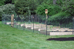 new garden 8054