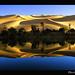 Dreamy Reflections ! by Bashar Shglila