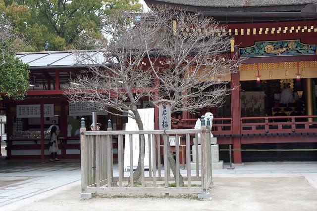 2012-kyushu-633