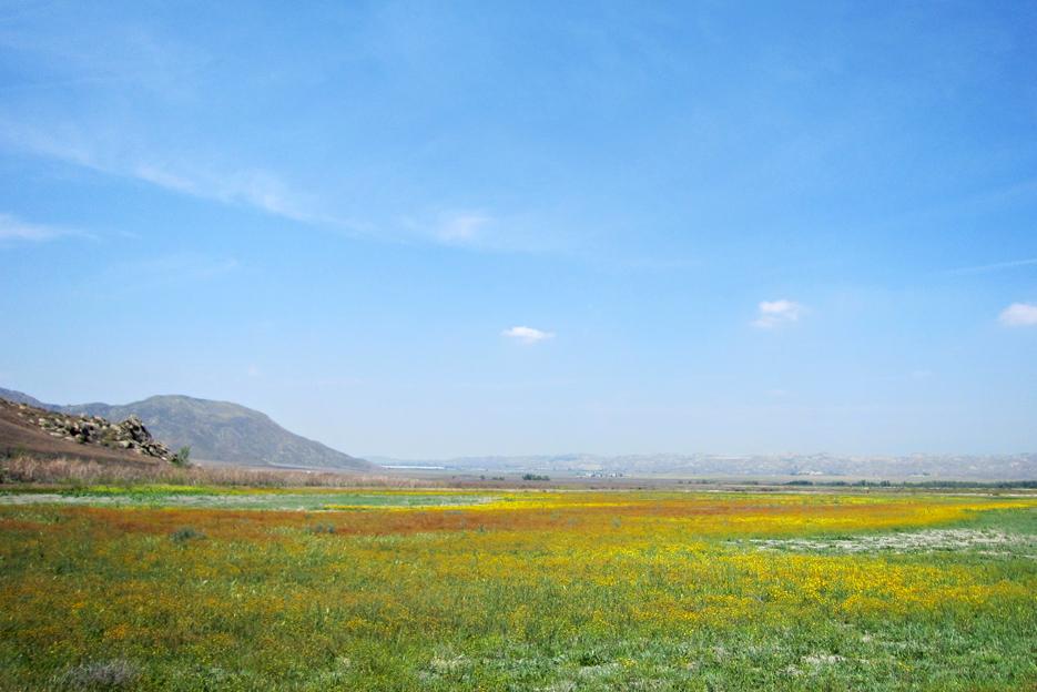 050412_sanjoc_04_landscape4