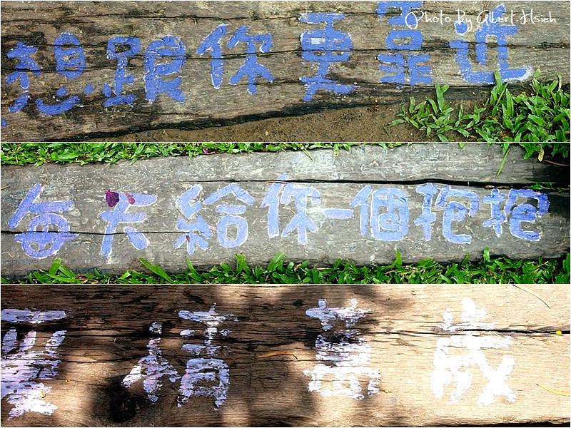 苗栗頭屋.薰衣草森林(充滿愛情與幸福的地方)