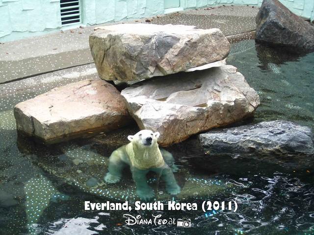 Everland - ZooTopia 04