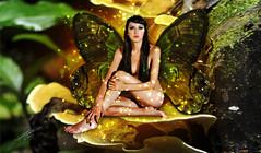 jungle(0.0), fairy(1.0), fictional character(1.0),