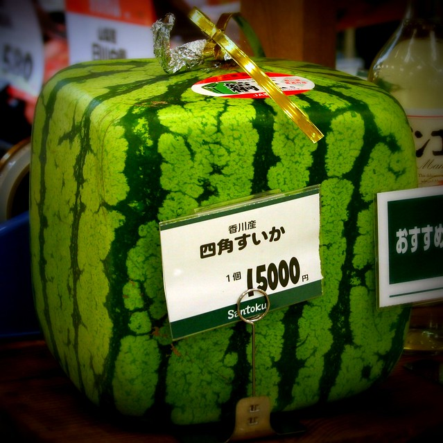 Square watermelon tokyo flickr photo sharing - Square watermelons how and why ...
