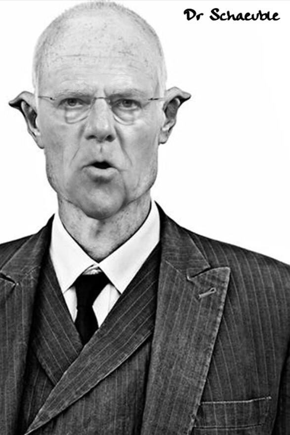 DR SCHAEUBLE