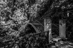 Il ponte verso il nulla