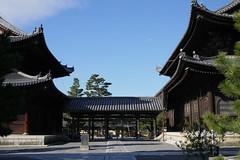 Kyoto Myoshinji