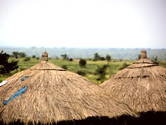 thatching, prairie, straw, rural area,
