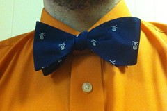 Picture of blue bow tie with skulls