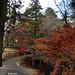 東大寺| Todaiji - Nara