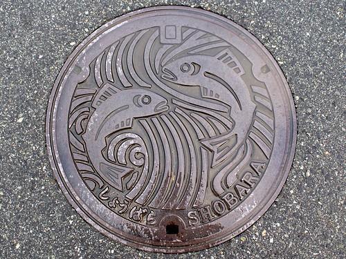 Shōbara, Hiroshima manhole cover(広島県庄原市のマンホール)