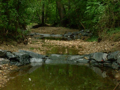 Photo set of Alta Vista Stream Restoration
