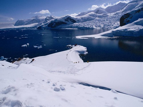 南極冰原。圖片提供:陳維滄