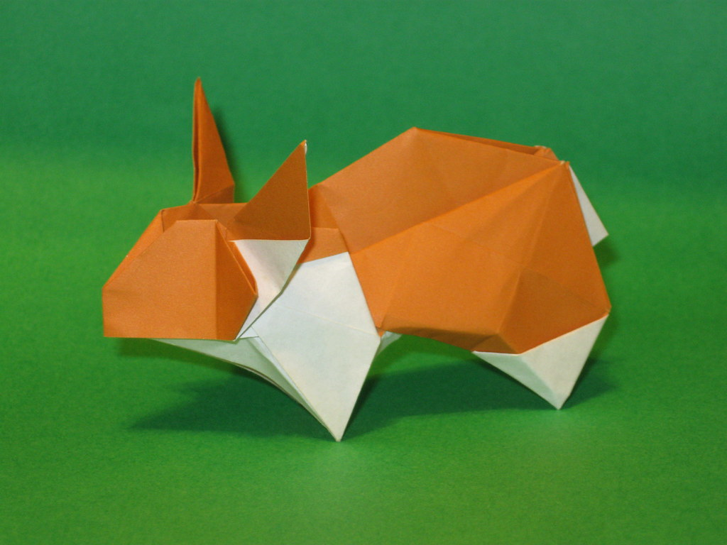 Coelho - Rabbit | Autor: Hsi-Hua Liu CP: dl dropbox com/u/45… | Flickr