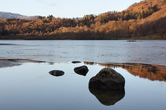 Southern shore of frozen Rydal Water, Lake District National Park, Cumbria, UK