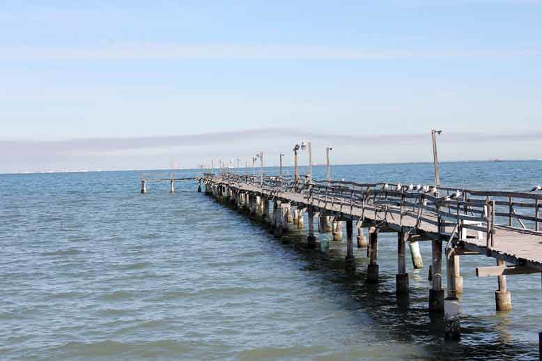 The squirrel cam blog archive old oso pier for Best fishing spots in corpus christi