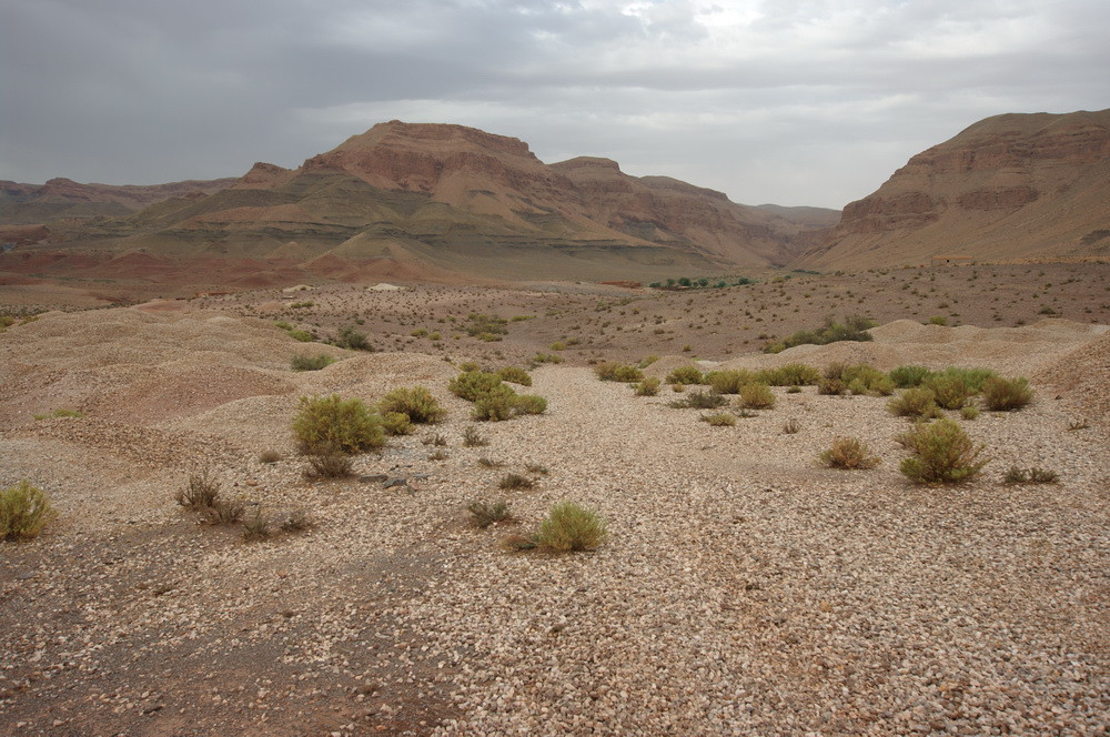 Cercanías de Imilchil. Fuente