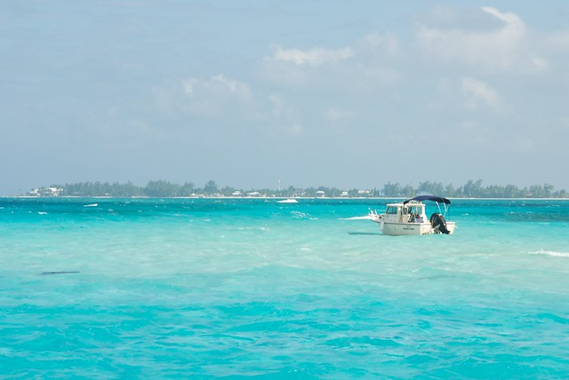 January 2011 - Vacation to Grand Cayman - Stingray City Tour