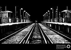 11/365 Last Train Home