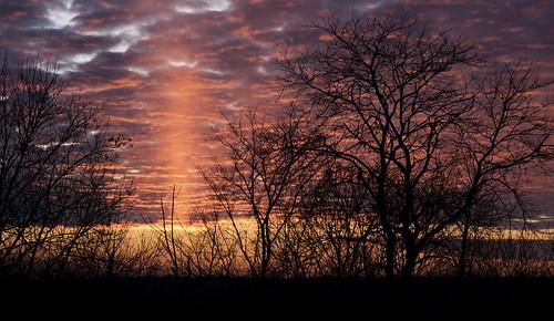 trees sunset cloud silhouette clouds photoshop canon rebel cloudy sunsets tamron sunpillar 2875mm lightpillar solarpillar xti