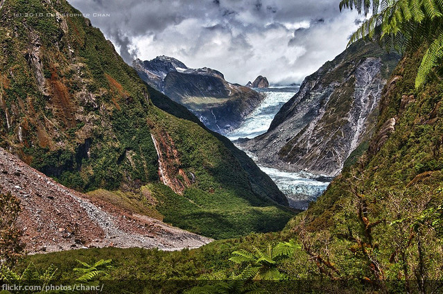 The Glacier in the Rainforest