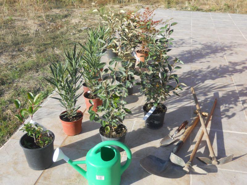 Jardineros en acci n c mo elegir herramientas y for Herramientas para el jardin