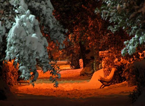 neve luci dicembre notte panchina sestofiorentino ragnaia sharkoman