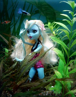 Lagoona Blue at home...