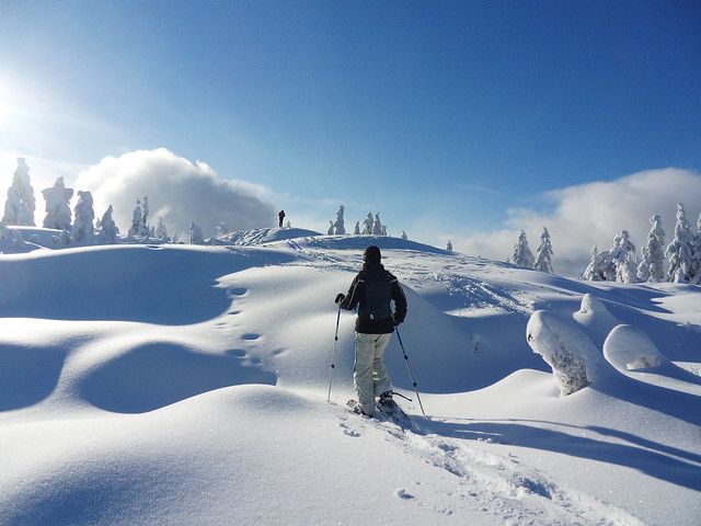 Hollyburn snowshoe