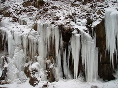 winter, snow, ice, formation, icicle, freezing,