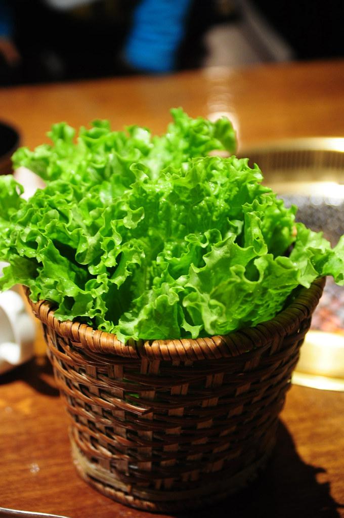 老乾杯 - 青菜葉