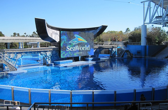 5337517337 2a3cdb4d66 z The Grand Finale at Sea World with Shamu the Whale