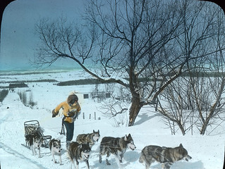 Winter sports in Quebec: dog sledding, QC, about 1934