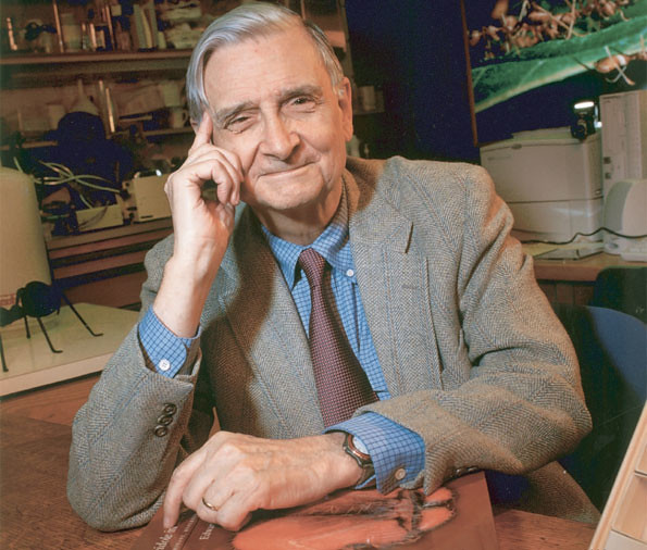 Dr. Edward O. Wilson. Photo courtesy of the Harvard University Museum of Comparative Zoology