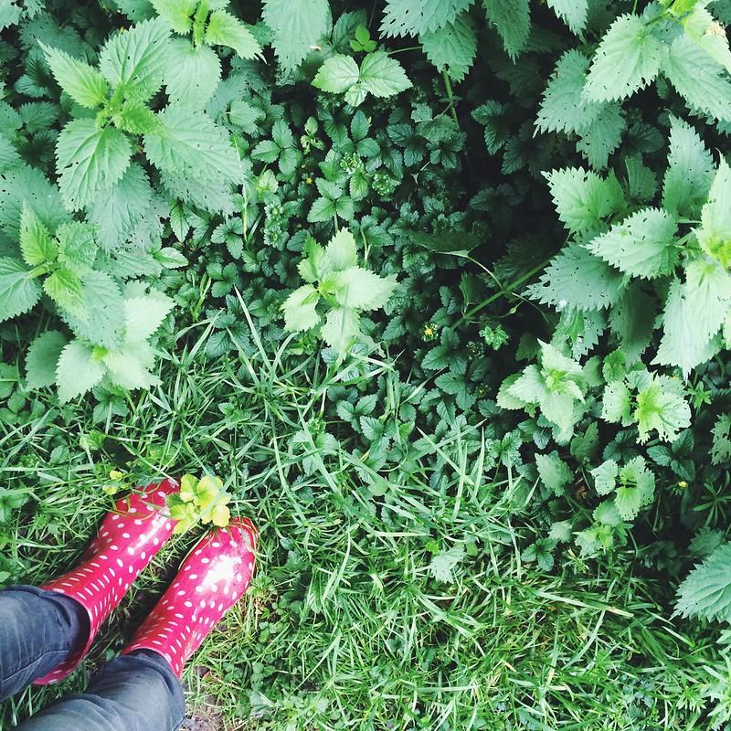 bottes de pluie andré