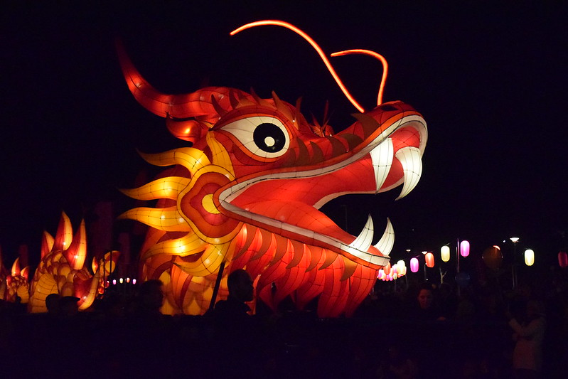 Hong Kong Dragon - Moon Lantern Festival - OzAsia 2016