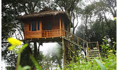 Nature Zone Resort Munnar