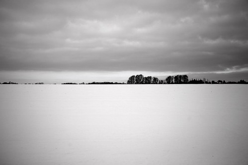 Winter in the Fens