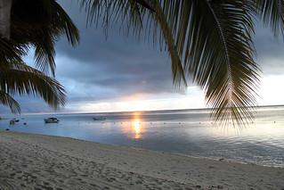 Palms, beach and setting sun